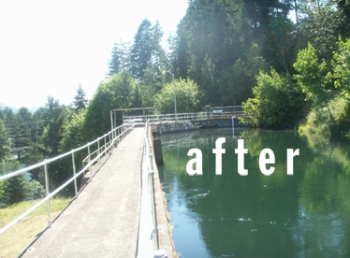 Railing Replacement in Walterville, OR