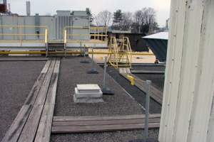 Rooftop Rail and Warning Line