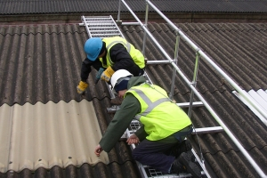 Roof Access Systems